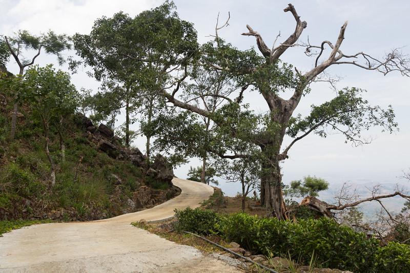 Path, Haputale