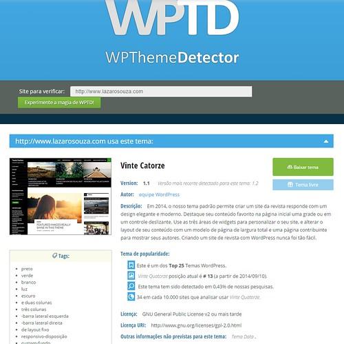 wp_theme_Detector