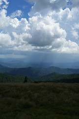 Appalachians from Roan Mountain State Park summit