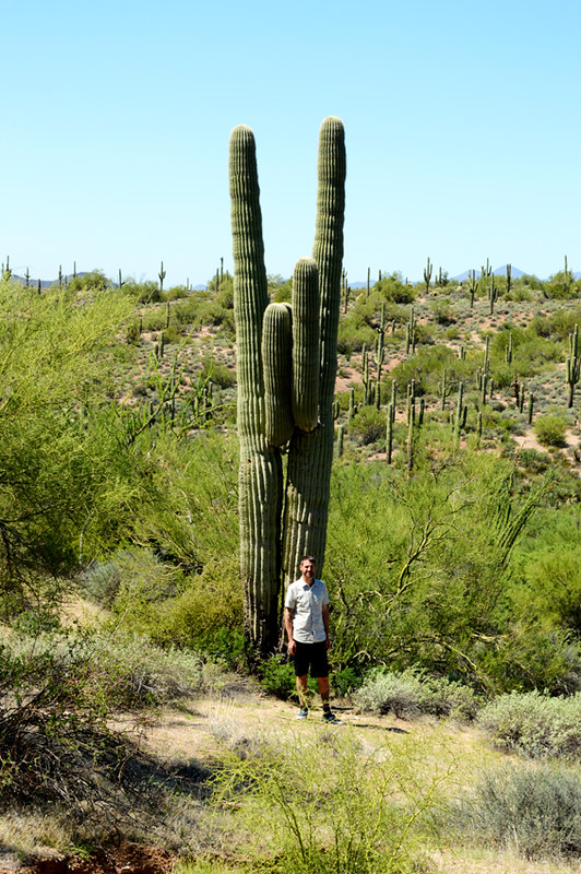 Mike & AZ Cactus
