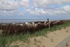 Cuxhaven-Strandpromenade-Duhnen-Doese_005