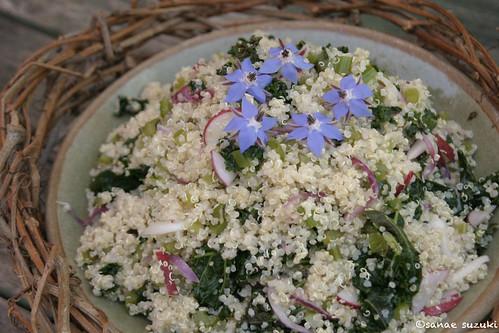©Borage Quinoa Salad IMG_0860