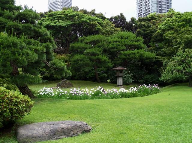 Hama-Rikyu Garden Lantern with Iris