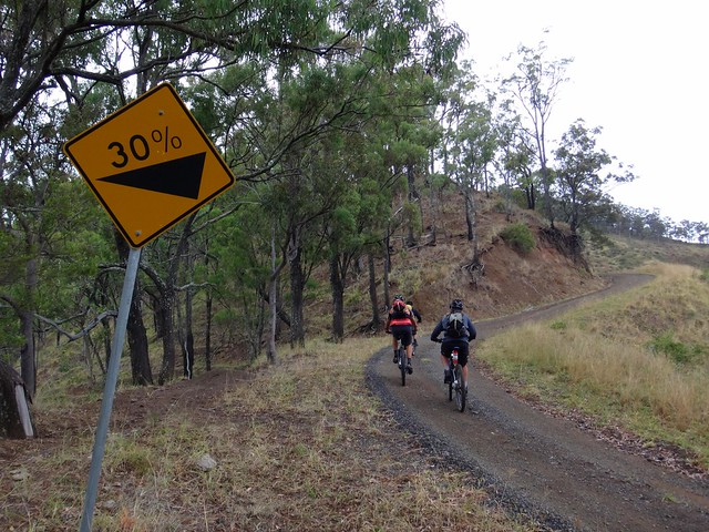 Climbing Philp Mountain Rd
