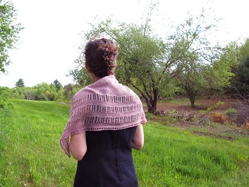 Silverleaf_Back_Landscape