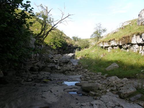 Limestone gorge II