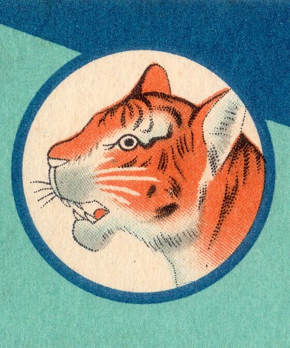tiger head002