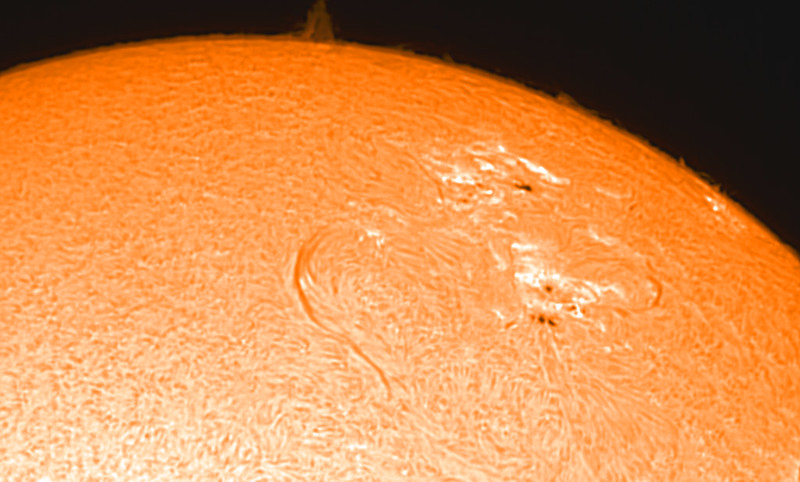 Solar filament, sunspots, plages and prominences
