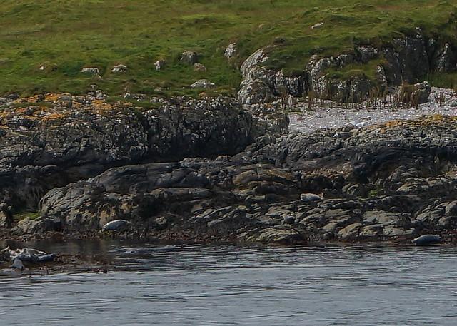 Scotland-50.jpg
