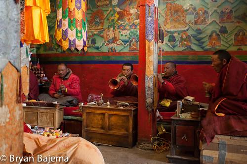 Tibet D6-10-347