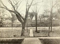 Financial Park