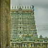 Madurai - Meenakshi Amman Temple Temple