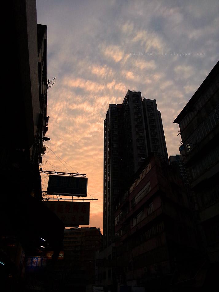 snap at dusk