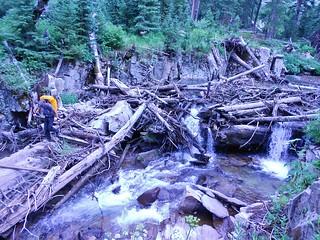 Helen Crossing Bilk Creek Logjam