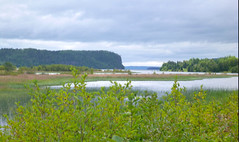 Nipigon River