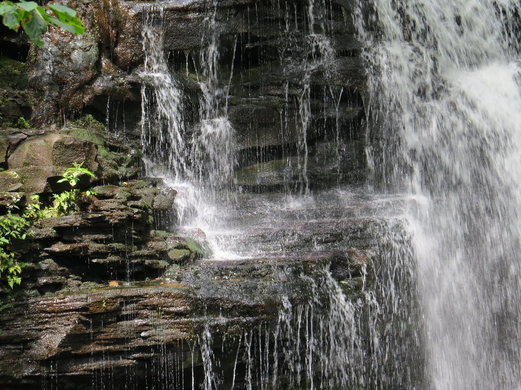 Ricketts Glen Waterfalls,   Benton   Pennsylvania