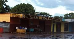 Lunchería Los Pijiguaos