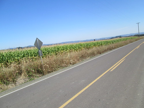 Smell the cornfield!