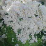 Hamburguer_de_Ervilha_e_Ricota (9)