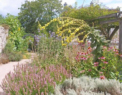 Leechwell herb garden