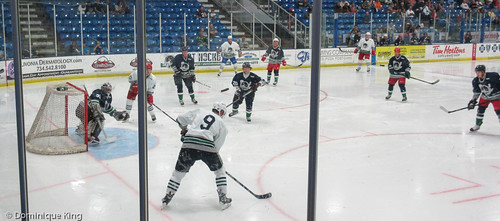 OHL Plymouth Whalers, 2014 Alumni game