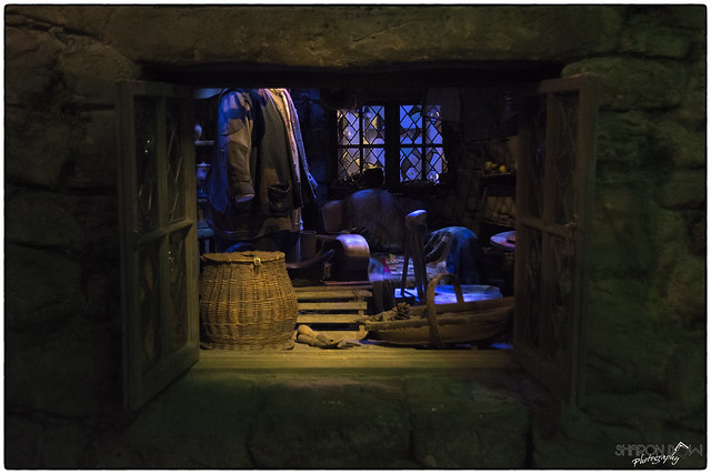 Through the open window to rubeus hagrid 39 s house flickr What house was hagrid in