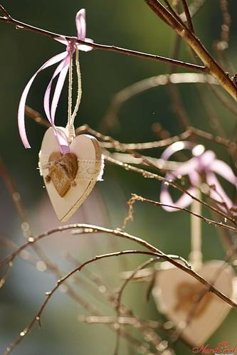 """""""Gril Parc"""" - оазис комфорта в сердце природы экзотической красоты!"""