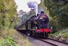 Severn Valley Railway Autumn Gala