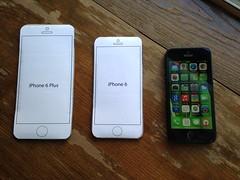 Cual iPhone 6