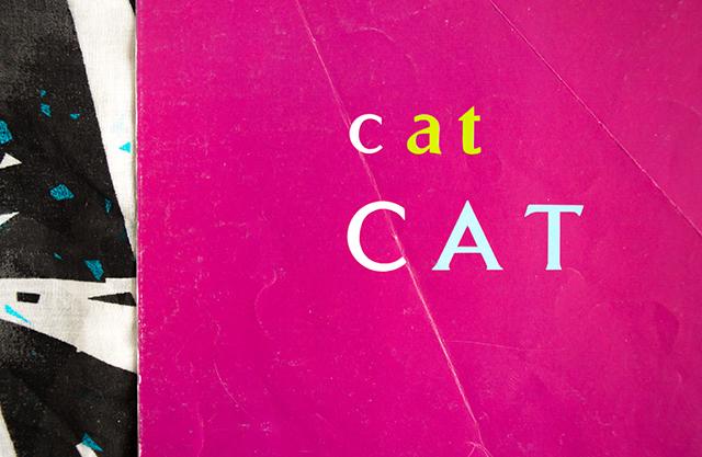 cat CAT by brian wildsmith
