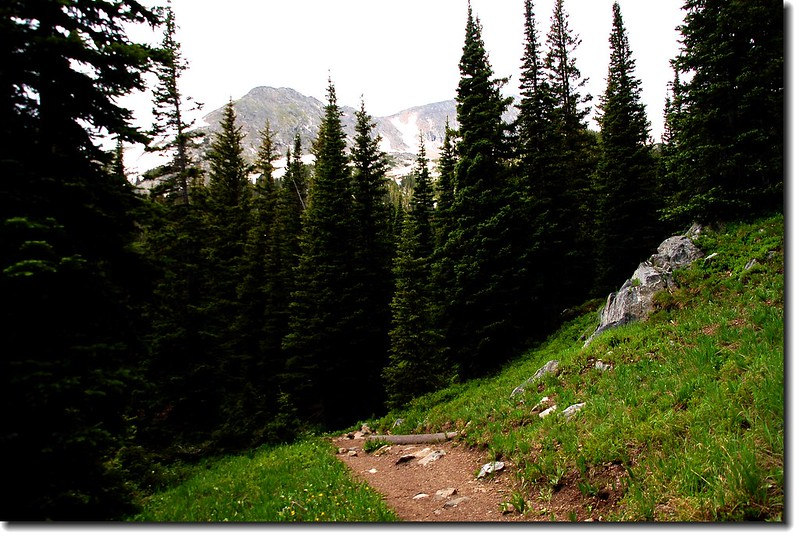 The trail descends to the North Fork of Middle Boulder Creek