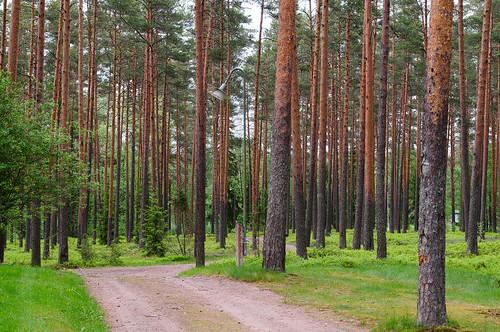 finland 2014 pori archipel satakunta
