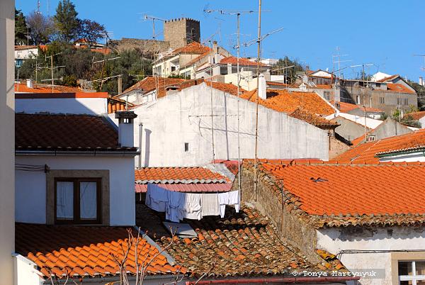 61 - Castelo Branco Portugal - Каштелу Бранку Португалия