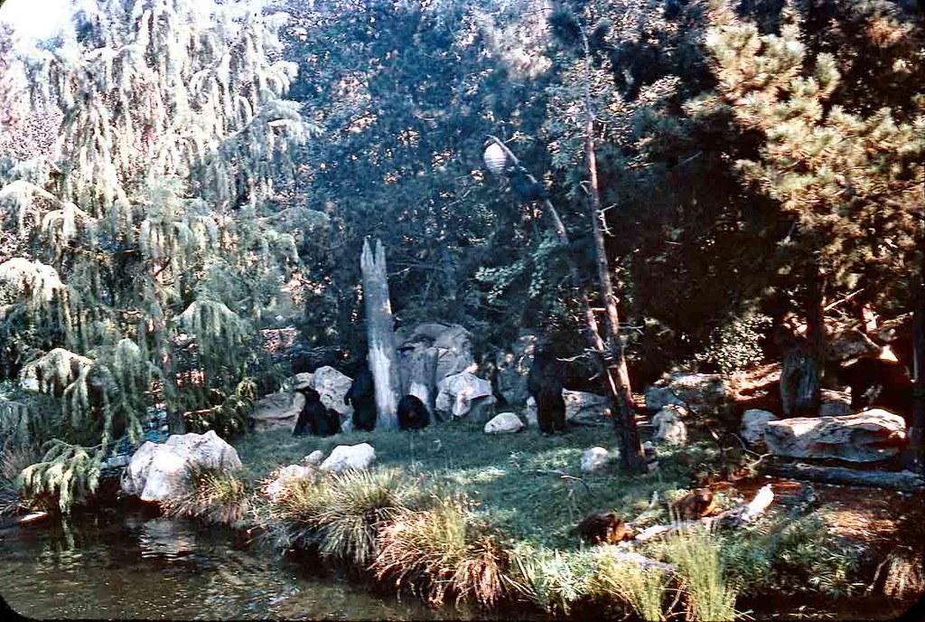 Bear Country, Nature's Wonderland, September 1967