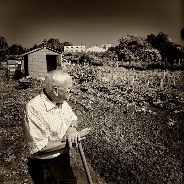jardins 74 portrait de jardiniers gardener 39 s portrait