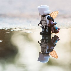 Drip-drop #starwars #stormtrooper #trooper #lego #minifig #teddy #scouttrooper #reflektion #backlight #outdoor #wing #puddle
