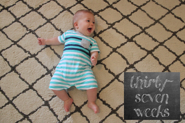 thirty-seven weeks
