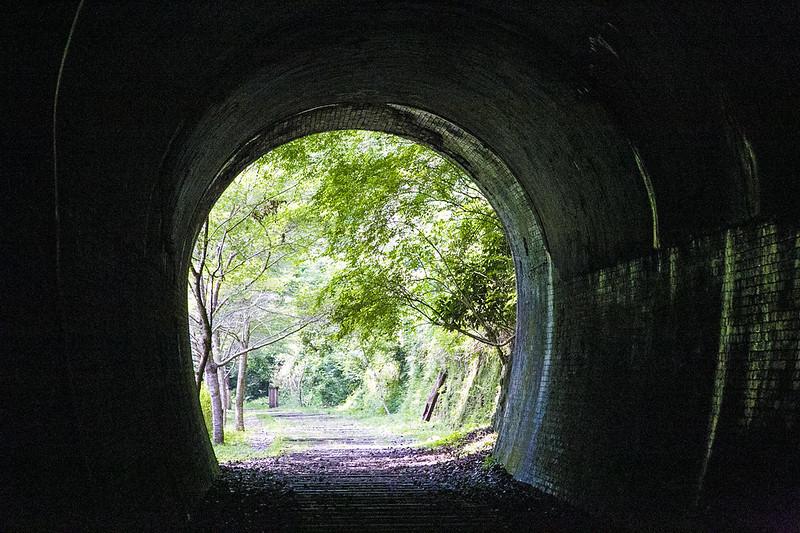武庫川渓谷廃線ハイキング(生瀬ー武田尾)609