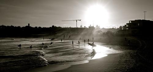 sunset bondi silhouette australia