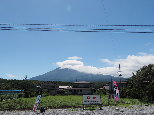 Shizuoka Yamanashi 2014 #24