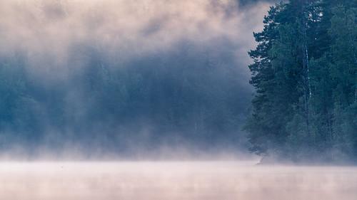 summer mist lake nature water fog night forest sunrise finland pond kuopio