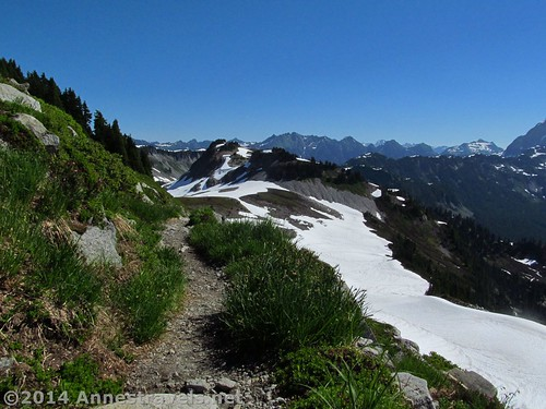 The Ptarmigan Ridge Trail often hugs the edge of the ridge, Mount Baker-Snoqualmie National Forest, Washington