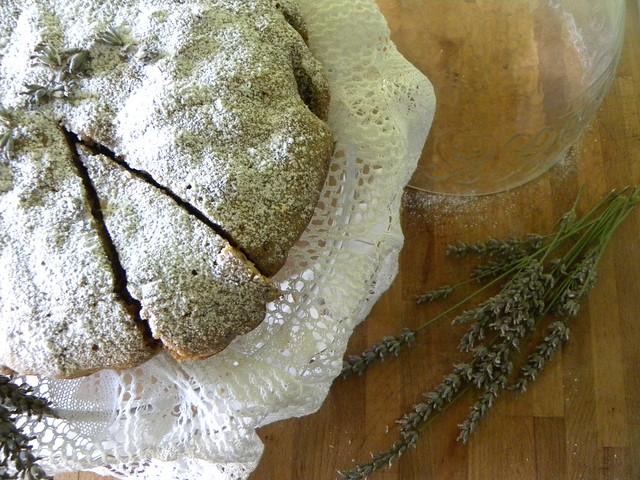 torta profumata alla lavanda, e sorprese di un'estate