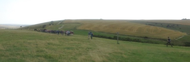 Along the South Downs Way: