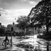Sun and drops by Jonas Rask