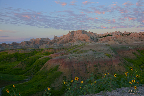morning sky green nature clouds southdakota sunrise outdoors dawn early earth wildflowers badlands prairie badlandsnationalpark