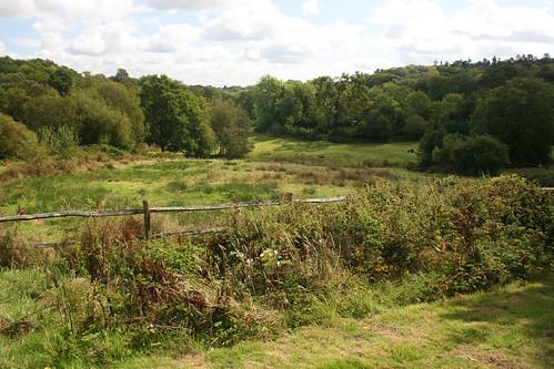 Swan Barn Walk, Haslemere