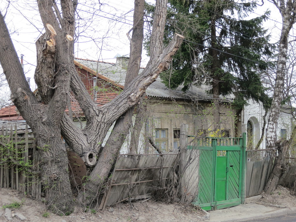 Chisinau 017