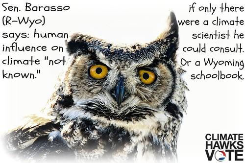 Owl Wyo CHV