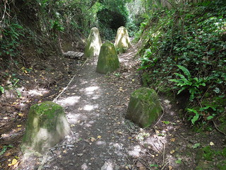 14 06 07 Day 6 - 7 Up the Torridge (2)